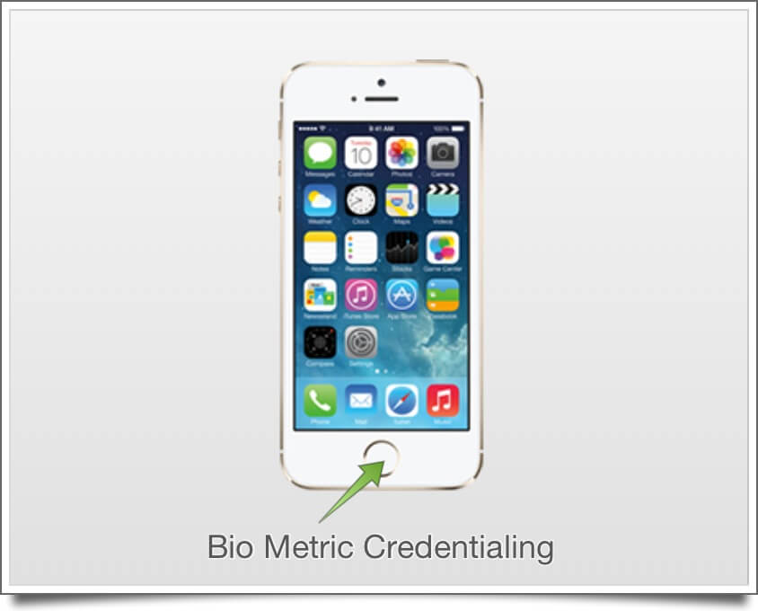 iPhone 5s EHR Bio Metric Credentialing
